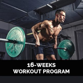 16 Weeks Workout Program